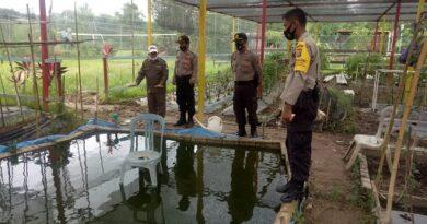 Jaga Ketahanan Pangan, Polres Bontang Bersama Mitranya Budidaya Ikan, Hidroponik Dan Peternakan